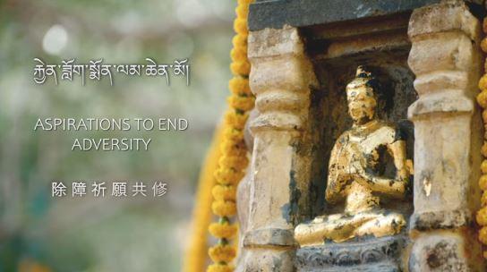 Sa Sainteté le Gyalwang Karmapa préside les prières des Monlams du 20 au 27 janvier 2021
